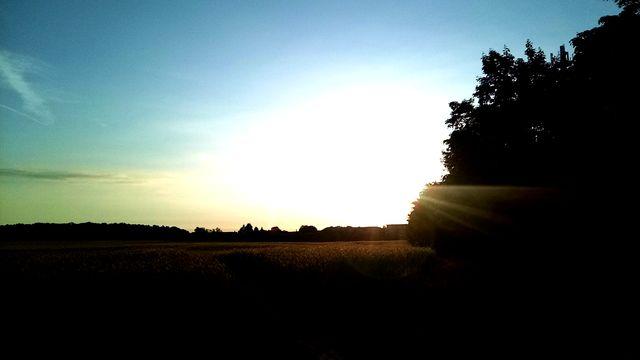 5.45 Uhr ist es auch in Fahrland schön :-)